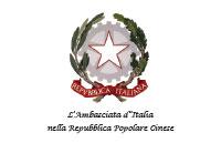 ian-home-loghi-istituzionali_ambasciata